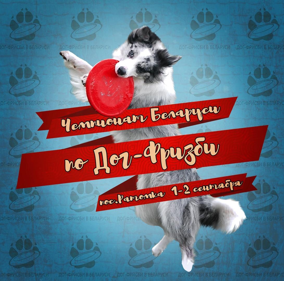 Первый чемпионат Республики Беларусь по дог-фрисби