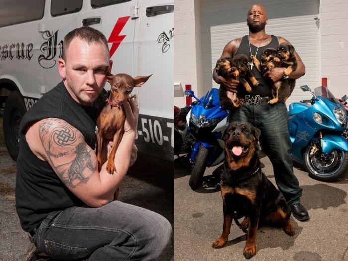 Байкеры Rescue Ink и спасенные ими собаки фото