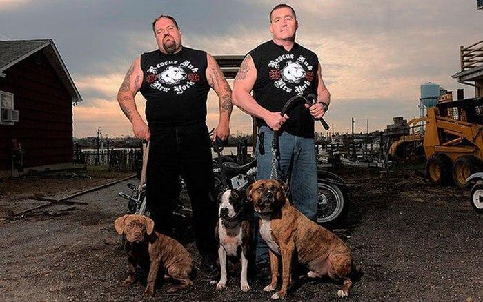 Байкеры Rescue Ink и спасенные собаки фото
