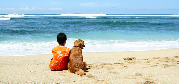 Ребенок и собака на берегу моря фото