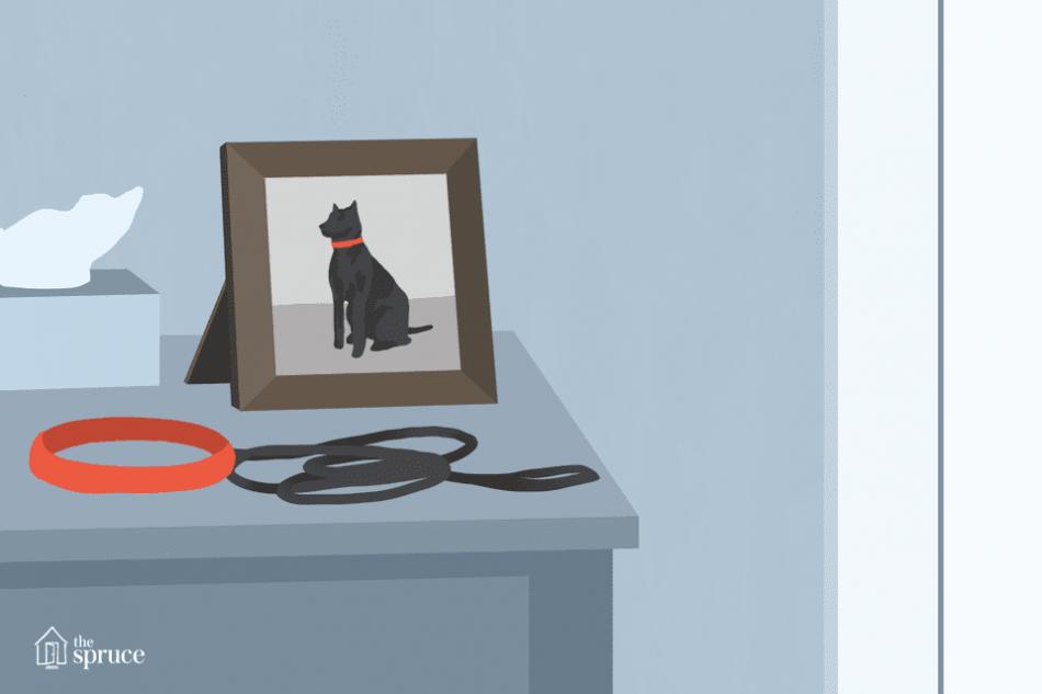 Как пережить смерть животного фото