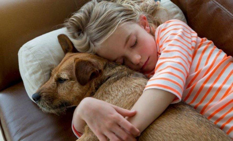 Ребенок обнимает собаку фото