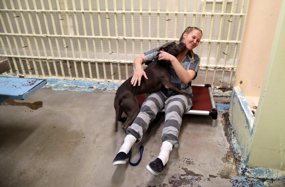 Заключенная обнимает собаку фото