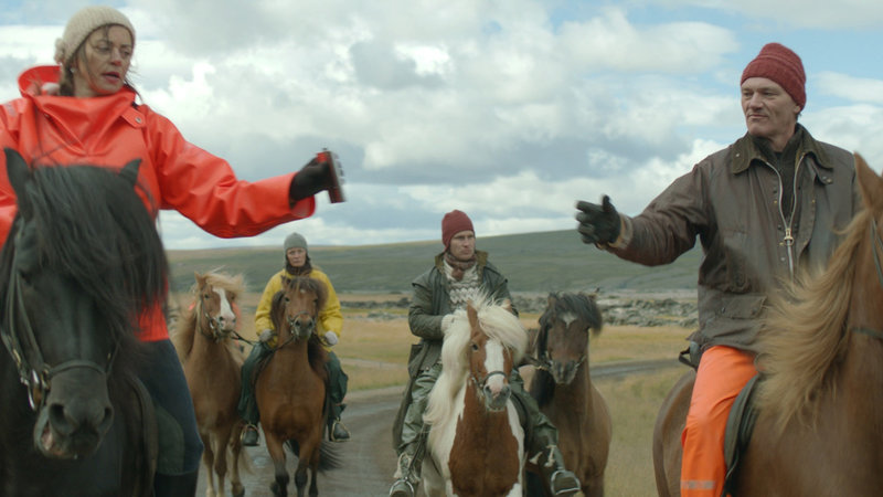 Исландские лошади в кино фото