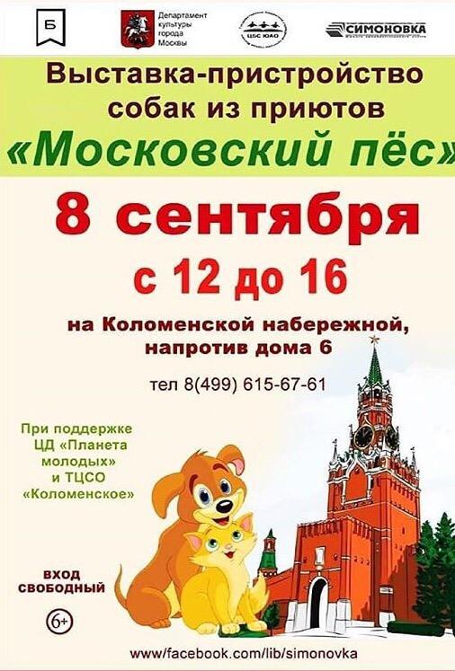 Московский пес