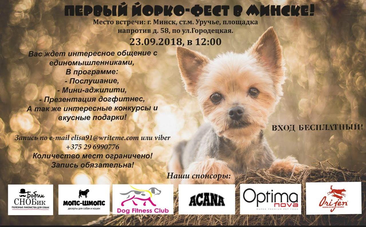 Йорко-фест в Минске