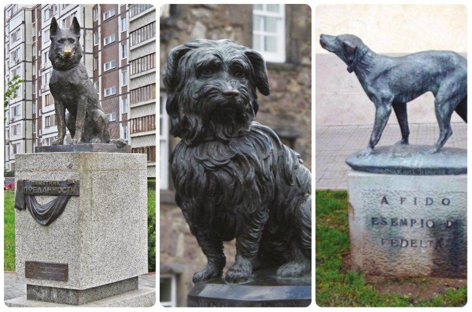 Памятники собакам, которые ждали хозяев фото