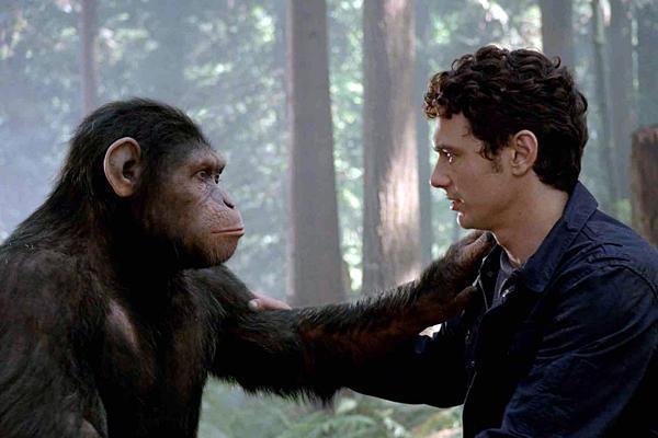 Человек и обезьяна смотрят друг на друга фото