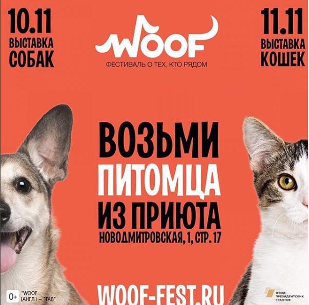 WOOF - фестиваль о тех,кто рядом
