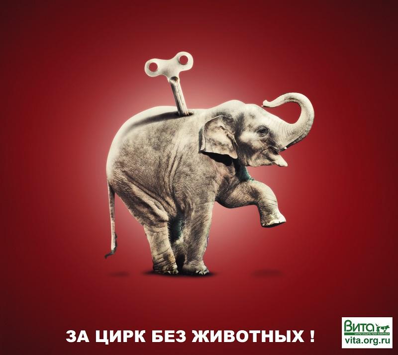 Листовка за цирк без животных