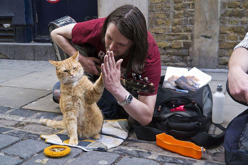 Боб уличный кот и Джеймс Боуэн фото