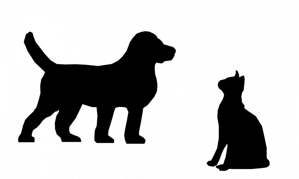 Силуэты собаки и кошки фото