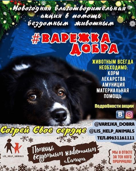 Акция — Варежка Добра  2018- 2019 гг.