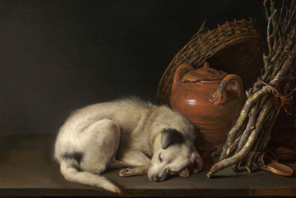 "Геррит Доу картина ""Спящая собака"" фото"