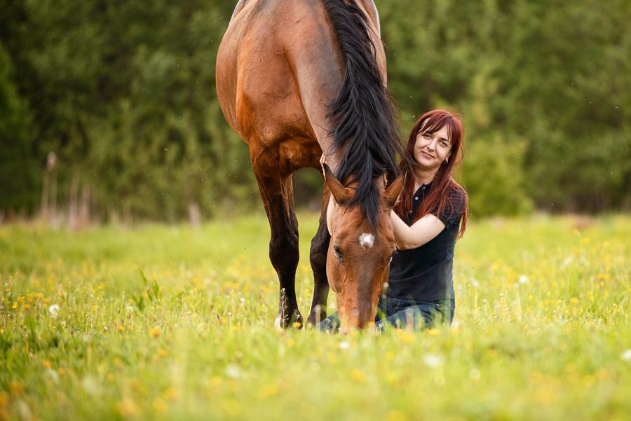 Гнедая лошадь и человек красивое фото