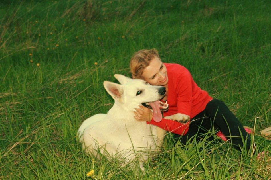 Белая швейцарская овчарка на траве с хозяйкой фото