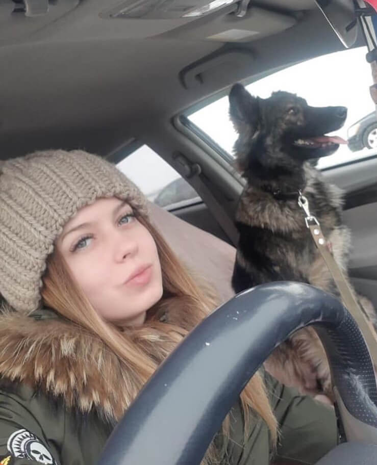 спасение собаки, любимый питомец, собака щенок