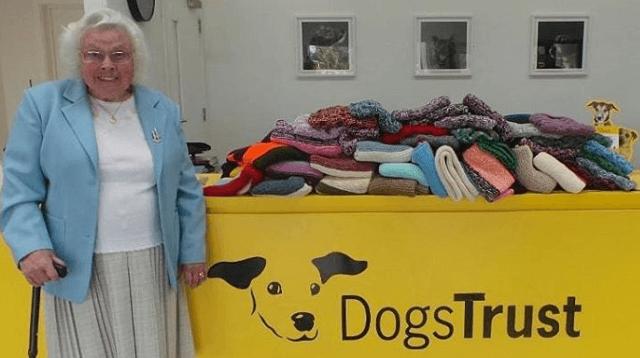 бабушка, собаки, одежда для собак, приют для собак