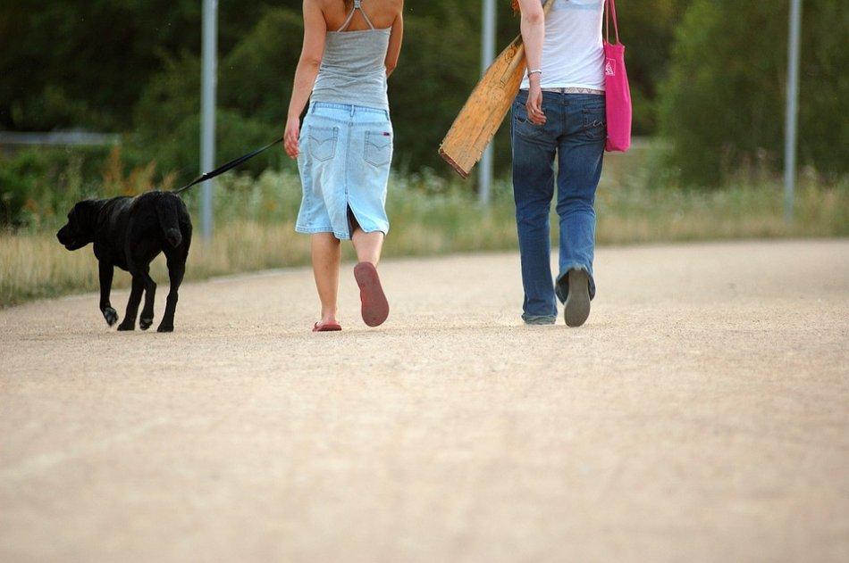 Женщина гуляет с черным лабрадором собакой фото