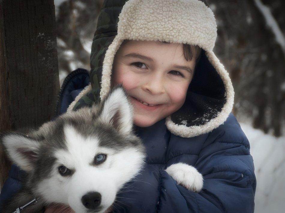 Мальчик и щенок хаски фото
