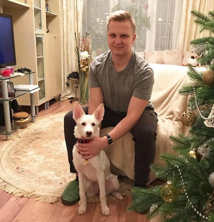 белая собака, собака дома, собака с хозяином, домашний питомец,щенок