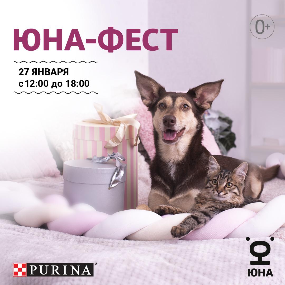 Выставка кошек и собак из приютов «Юна-Фест»