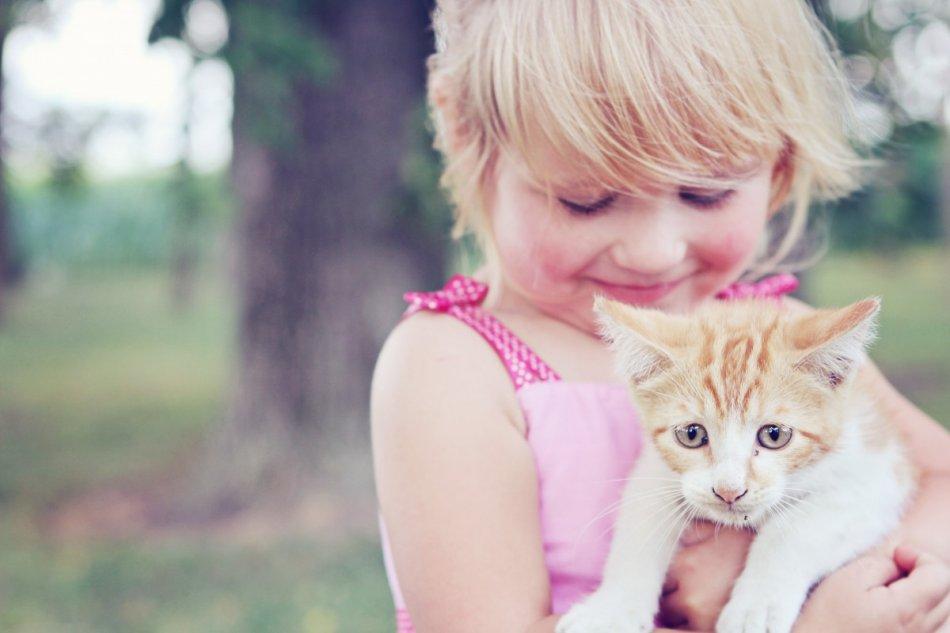 Девочка и котенок фото