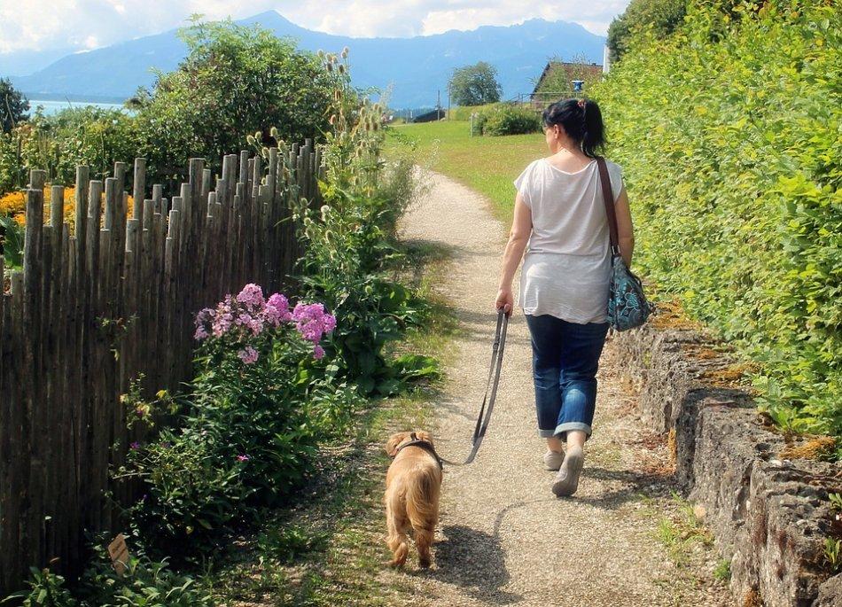 Женщина гуляет с собакой на поводке фото
