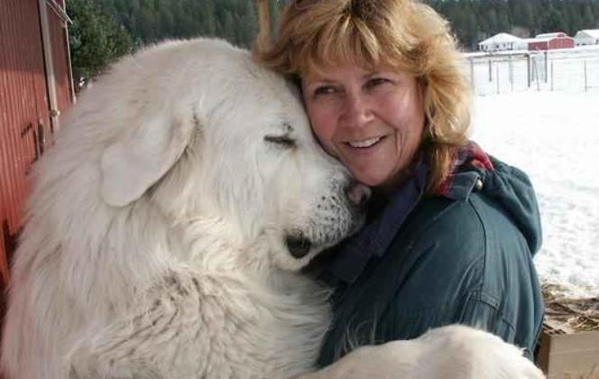 объятия, обнимашки, собака, собака обнимается, белый пес