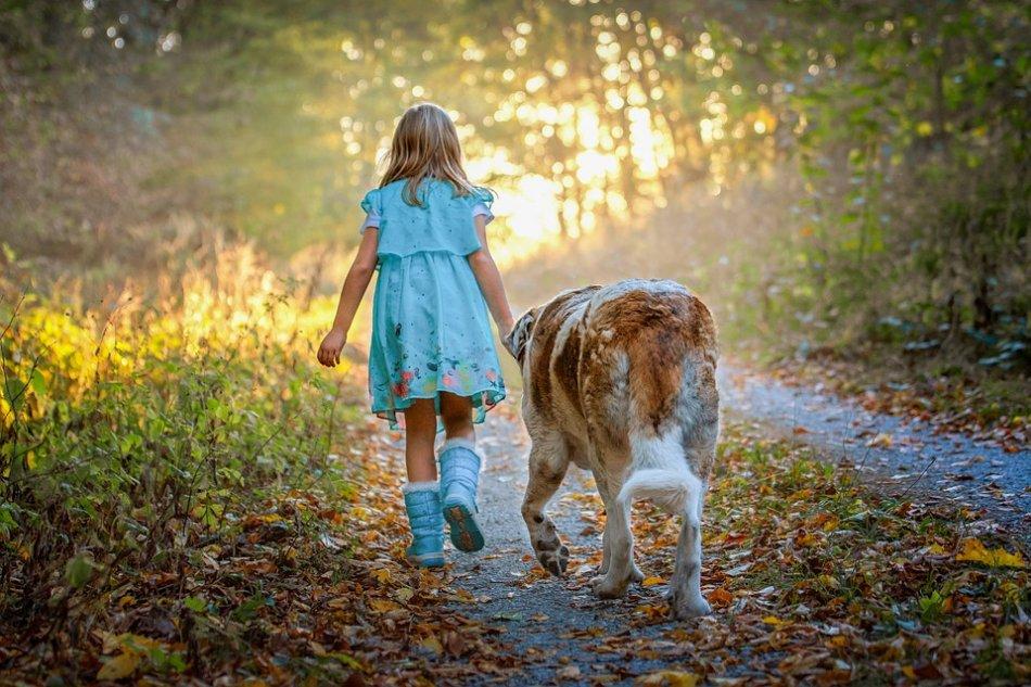 Ребенок и большая собака идут по дороге фото
