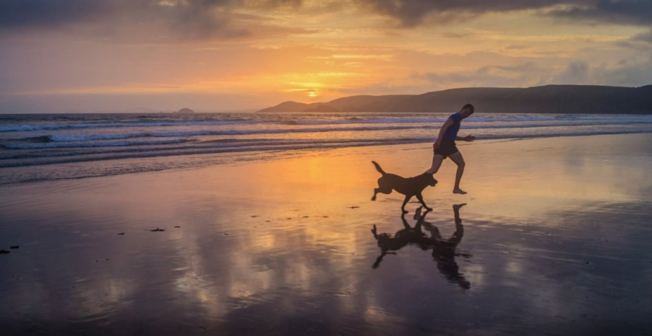 Собака и человек бегут по берегу моря фото