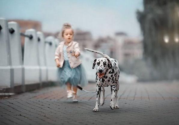 девочка гуляет с далматином