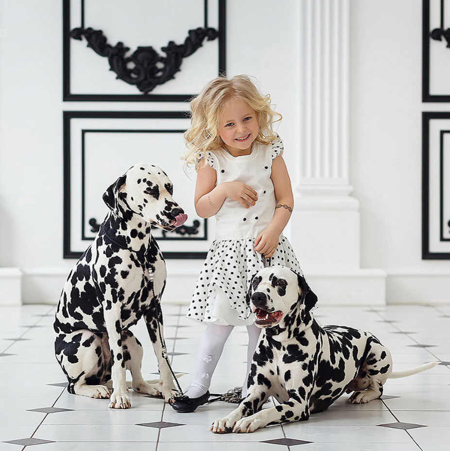 девочка и два далматина фото