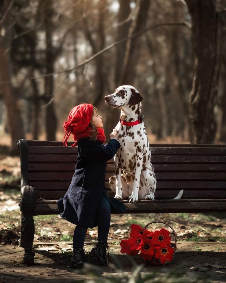 девочка и далматинец фото