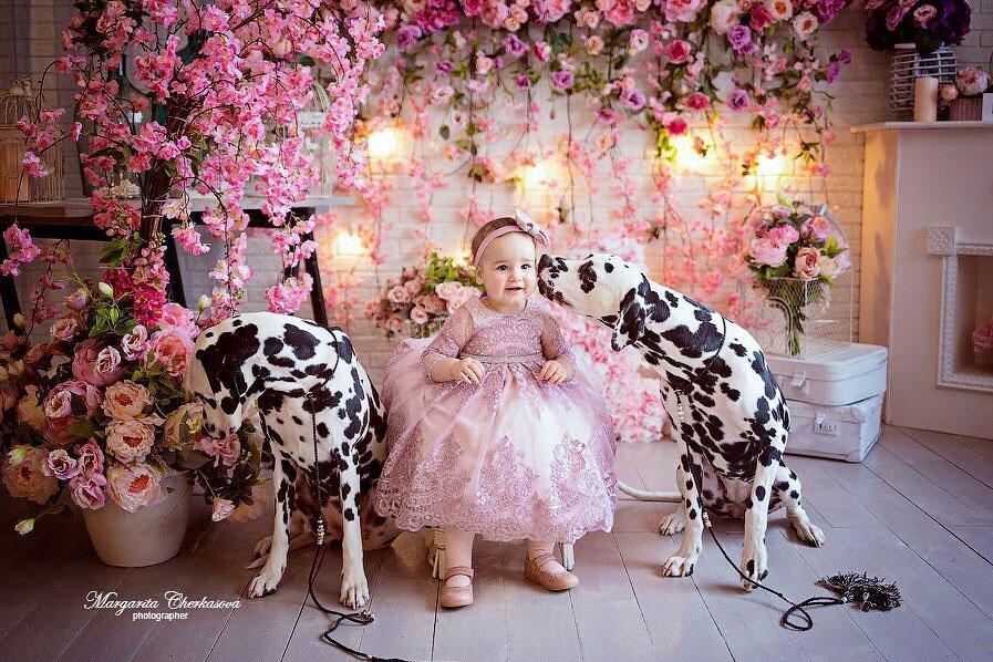 ребенок и далматины фотография
