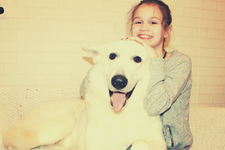 Девочка обнимает белую швейцарскую овчарку собака фото