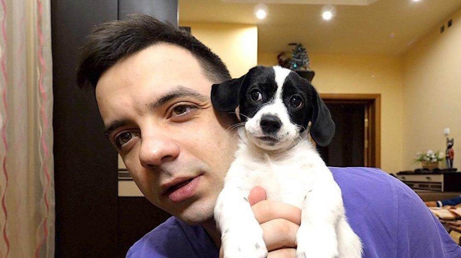собака и хозяин, человек, питомец, дом