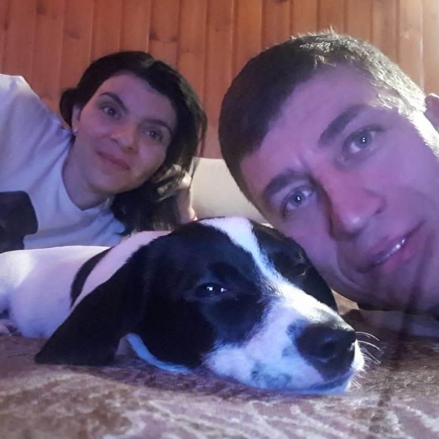 мужчина, женщина, собака, семья