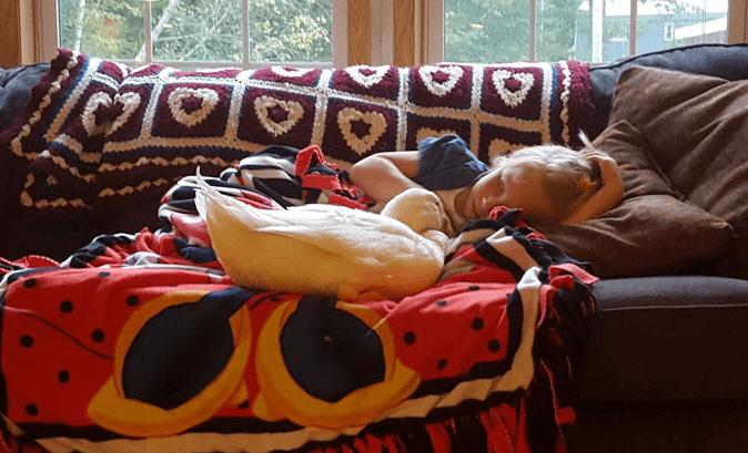 диван, утка, девочка, ребенок, покрывало, селезень