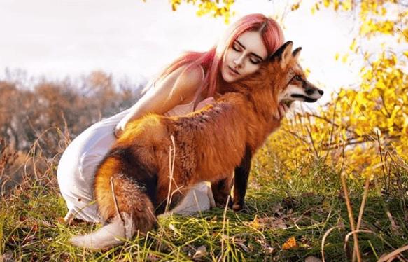 девушка, лиса, лис, лисица, хищник