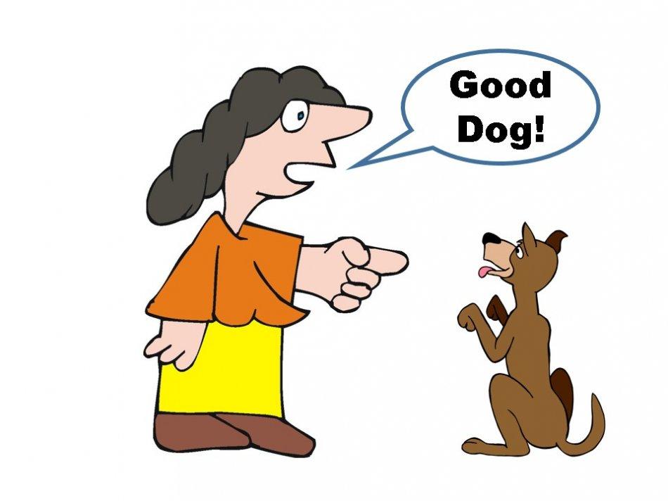 Человек хвалит собаку рисунок фото