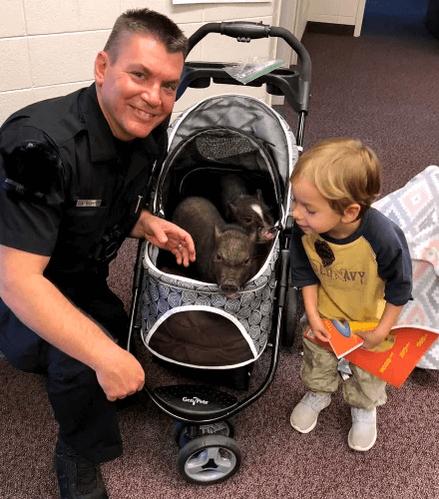 полицейский, ребенок, коляска, свинья, мужчина