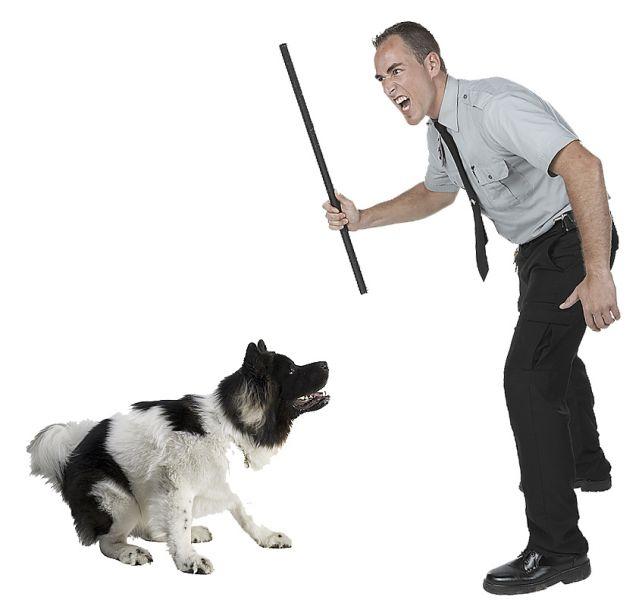 Человек бьет собаку фото