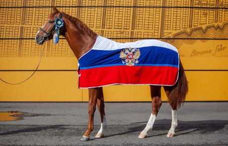 Иппосфера — главное конное событие года