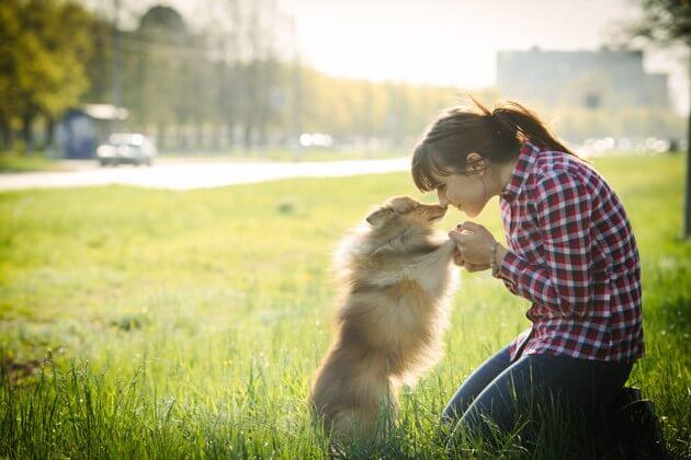 девочки и собака, домашний питомец, прогулка