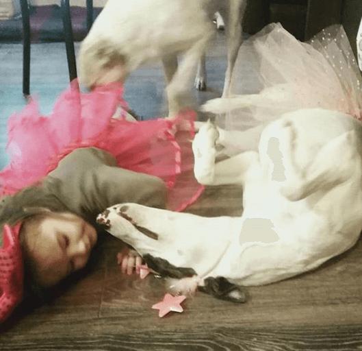 собака, девочка, ребенок, домашнее животное