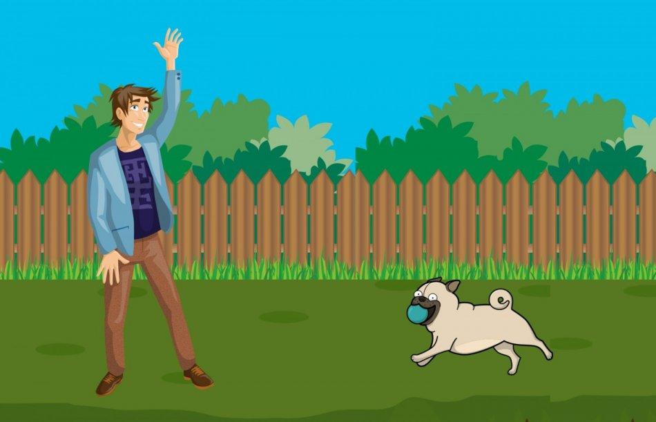 Мопс с мячом бежит к хозяину картинка рисунок фото