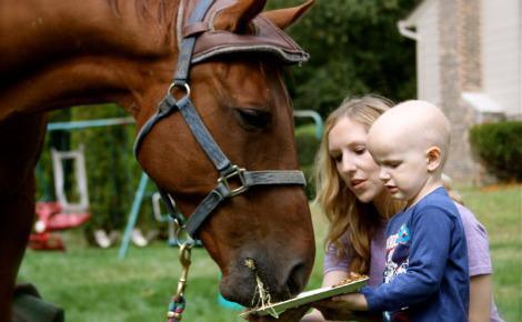 Маленький ребенок и лошадь фото