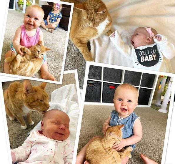 ребенок и кошка, питомец, домашнее животное