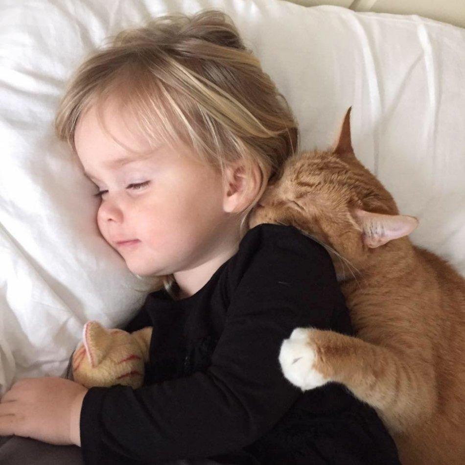 ребенок и кошка, друзья, сон